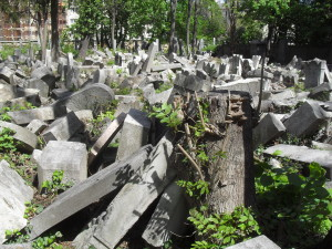 Dilapidated grave memorials in the Jewish cemetery in Währing (c) Tim Corbett